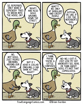 This is Why Ducks Don't Own Dogs