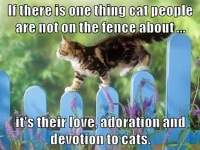 If there is one thing cat people are not on the fence about ...  it's their love, adoration and devotion to cats.