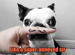 Like a super-annoyed sir
