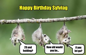 Happy Birthday Sylviag
