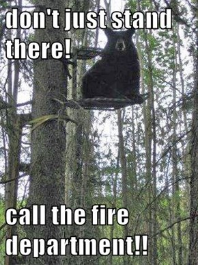 don't just stand there!  call the fire department!!