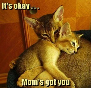 It's okay . . .  Mom's got you