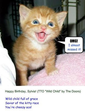 "appy Birthday, Sylvia! (TTO ""Wild Child"" by The Doors)"