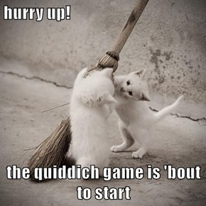 hurry up!  the quiddich game is 'bout to start