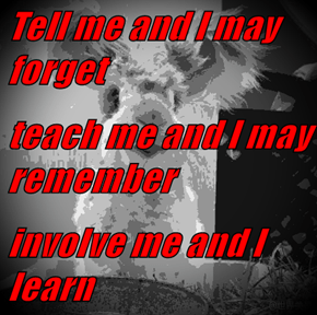 Tell me and I may forget teach me and I may remember involve me and I learn