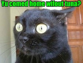 Yu comed home wifout tuna?