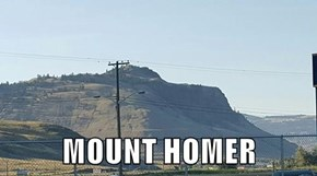 MOUNT HOMER