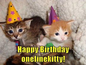 Happy Birthday onefinekitty!
