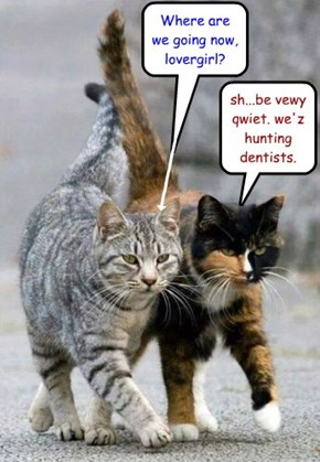 be vewy qwiet. we'z hunting dentists