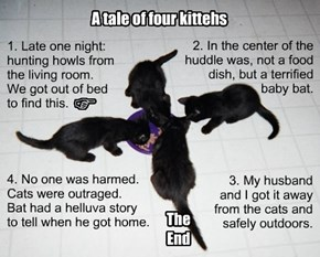 True cat tale.