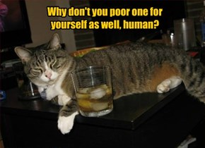 Why don't you poor one for yourself as well, human?