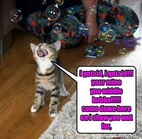 kitty vs bubbolz