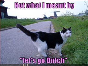 "Not what I meant by  ""let's go Dutch""."