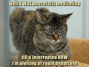 well, i WAZ peacefully meditating  till u interrupted NOW                                                        i'm plotting ur rapid departure
