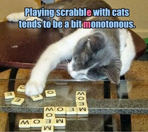 Playing scrabble with cats tends to be a bit monotonous.