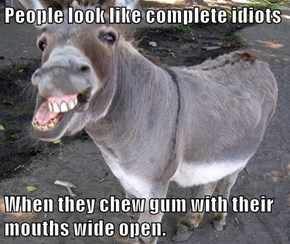 People look like complete idiots  When they chew gum with their mouths wide open.