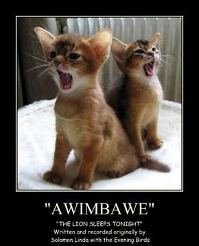 """""""AWIMBAWE"""""""