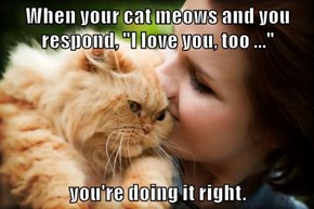 """When your cat meows and you respond, """"I love you, too ...""""  you're doing it right."""