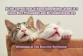 As the current year at Kamp KuppyKakes draws to a close Miss Prisspuddy and Ms.Stobitrietnao are         dreaming of The Discrete Resthome.