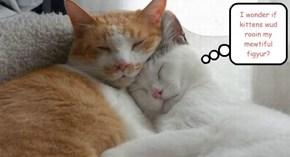I wonder if kittens wud rooin my mewtiful figyur?