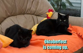 Oktoberfest  is coming up.