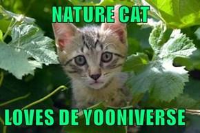 NATURE CAT  LOVES DE YOONIVERSE