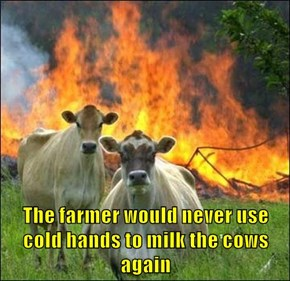 The farmer would never use cold hands to milk the cows again