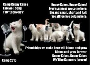 Kamp Kuppy Kakes Farewell Song