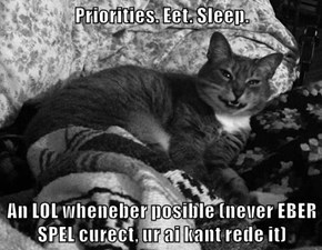 Priorities. Eet. Sleep.  An LOL wheneber posible (never EBER SPEL curect, ur ai kant rede it)