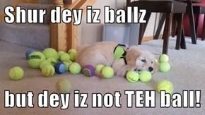 Shur dey iz ballz  but dey iz not TEH ball!