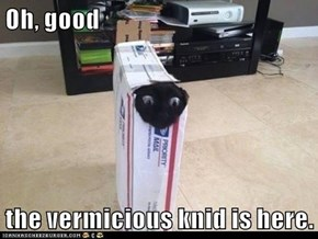 Oh, good  the vermicious knid is here.