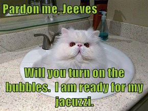 Pardon me, Jeeves  Will you turn on the bubbles.  I am ready for my jacuzzi.