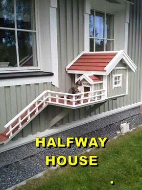 HALFWAY HOUSE                                    .