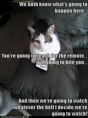 We both know what's going to happen here... You're going to reach for the remote... I'm going to bite you... And then we're going to watch whatever the hell I decide we're going to watch!