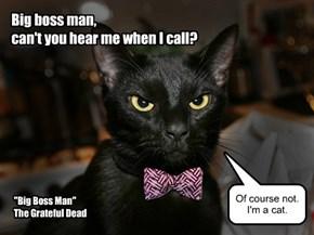 """Big Boss Man"" by The Grateful Dead"