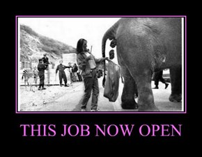 THIS JOB NOW OPEN