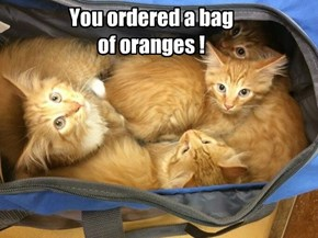 You ordered a bag of oranges !