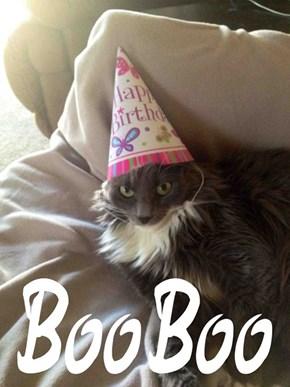Happy Birthday, BooBoo