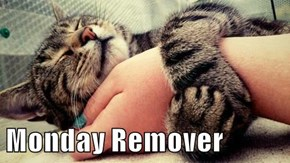 Monday Remover