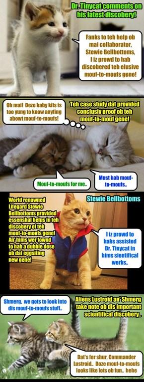 BREAKING NEWS - In astounding scientific breakthrew, Dr. Tinycat who resently won teh Nobel Prize in Medicines for hiz work in Alien DNA, haz now discobered an eggsiting new gene! Tinycat eggspected to win sekond Nobel Prize!