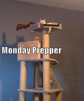 Monday Prepper