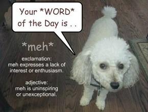 *meh* (informal word) meaning