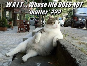 W A I T . . Whose life DOES NOT *matter* ???