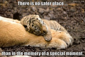 There is no safer place ...  than in the memory of a special moment.