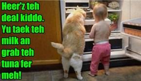 Heer'z teh deal kiddo.  Yu taek teh milk an   grab teh tuna fer meh!
