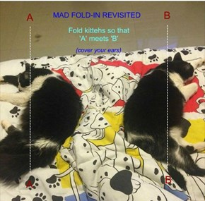 MAD FOLD-IN REVISITED
