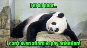 I'm so poor...                I can't even afford to pay attention!