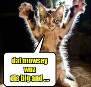 dat mowsey wuz  dis big and ....