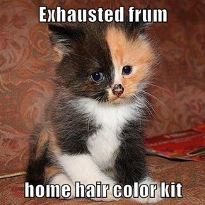 Exhausted frum  home hair color kit