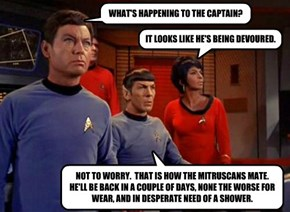 WHAT'S HAPPENING TO THE CAPTAIN?